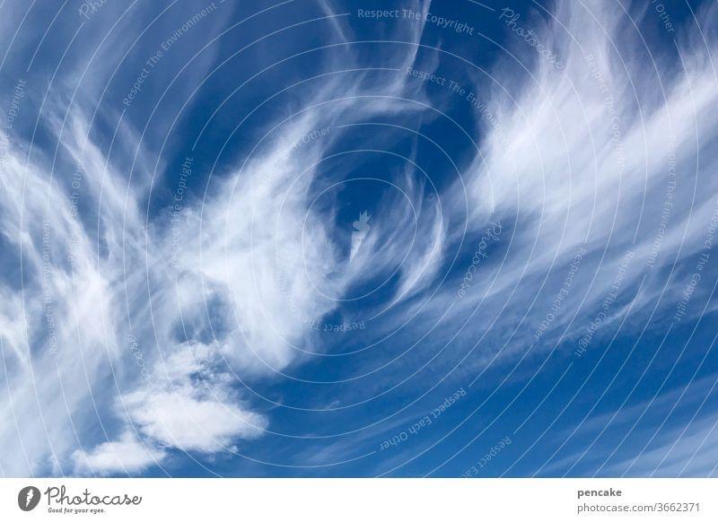 druckerzeugnis | hoch oder tief? Wolken Wetter Luftdruck Zirruswolken Cirruswolken Tiefdruck Hochdruck Federwolken Himmel blau Natur Klima Umwelt