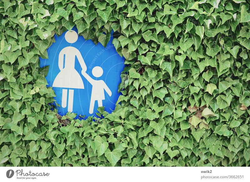 Mutter-Kind-Kreis Hecke Blätter Flora dicht Verkehrsschild Gehweg Fußweg Fußgänger Fußgängerzone verkehrsberuhigt versteckt zuwachsen Figuren Mutter und Kind