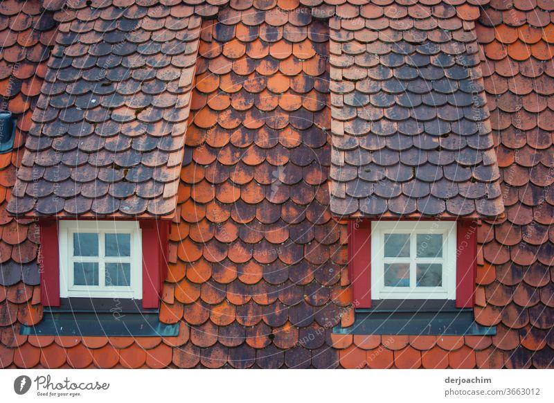 Zwei alte  Stehende Dachfenster - Walmdach - und rote alte Dachziegel. Fenster Menschenleer Fassade Haus Architektur Gebäude Außenaufnahme Farbfoto Bauwerk Tag