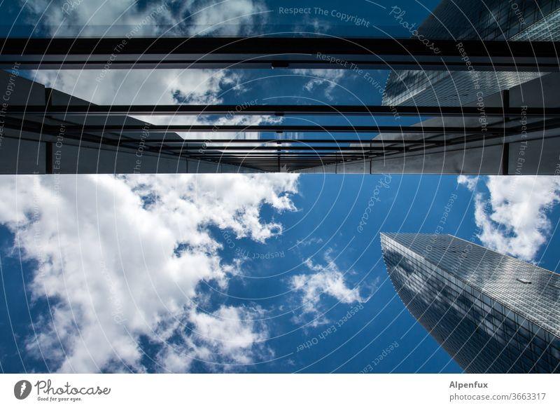 Berührungspunkte | Architektur und Natur wolkenkratzer Hochhaus Hochhausfassade Fassade Stadt Fenster Außenaufnahme Farbfoto Gebäude Bauwerk Himmel Menschenleer