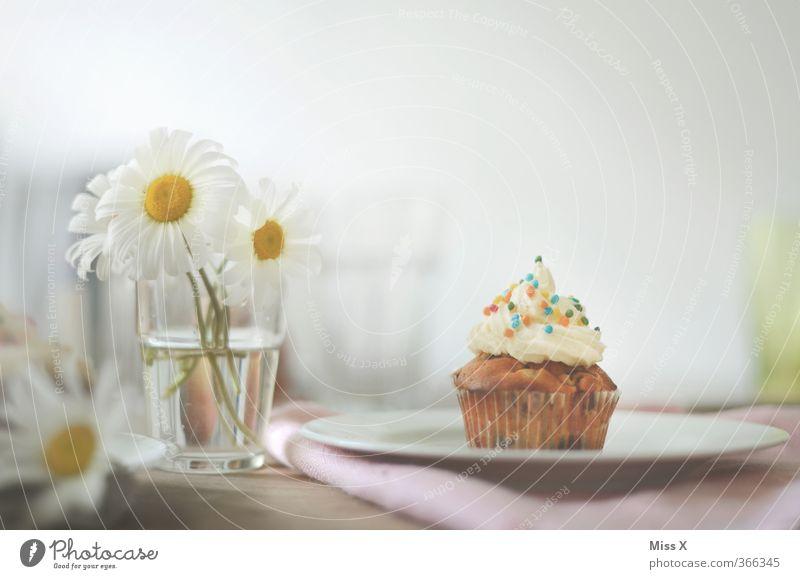 Frühstück ist fertig Lebensmittel Milcherzeugnisse Teigwaren Backwaren Kuchen Dessert Süßwaren Ernährung Kaffeetrinken Büffet Brunch Geschirr Essen