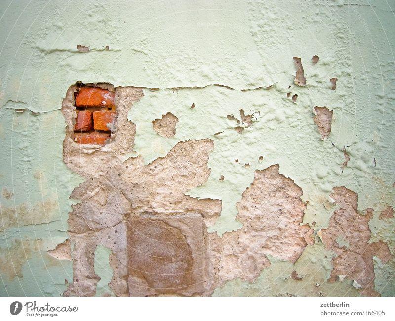 Wand Häusliches Leben Wohnung Renovieren einrichten Natur Dorf Kleinstadt Menschenleer Haus Bauwerk Gebäude Architektur Mauer alt Desaster Misserfolg Stadt