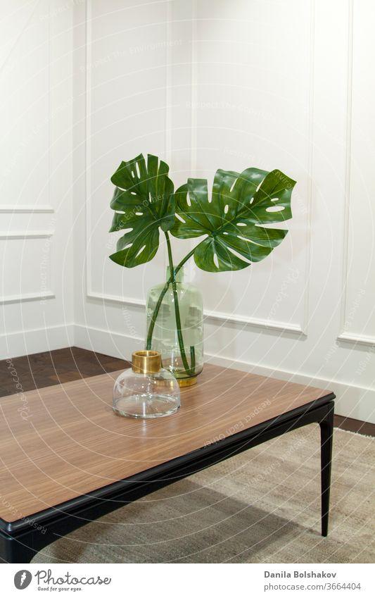 Monstera-Blätter in Glasvase auf einem Holztisch in einem eleganten Interieur boiserie Großstadtdschungel Monstera deliciosa teuer lebend Wand Laubwerk Stil