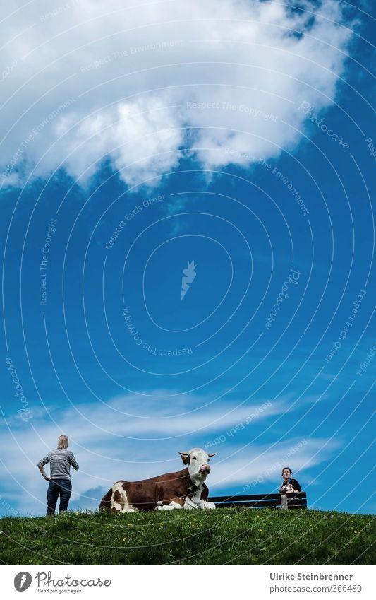 AST 6 Inntal / Gipfeltreffen der Damen Mensch Frau Erwachsene Freundschaft 2 45-60 Jahre Natur Landschaft Sommer Gras Alpen Berge u. Gebirge Bayern Allgäu Tier