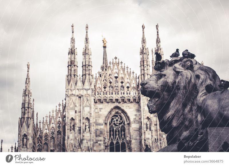"""Nahaufnahme des Denkmals """"Löwe von Vittorio Emanuele II"""", im Hintergrund der Mailänder Dom Christentum Anatomie antik Tier Antiquität Architektur Kunst"""