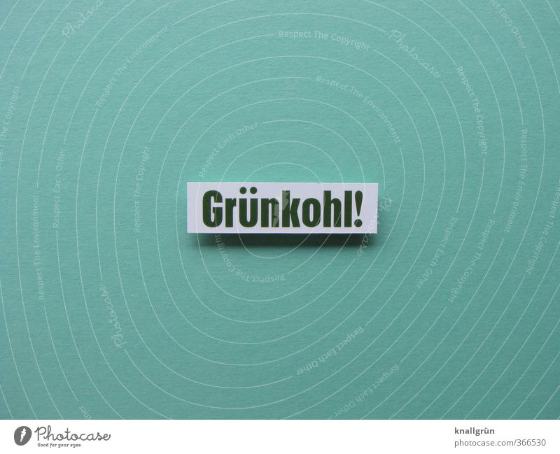 Grünkohl! Natur grün Gefühle Gesundheit Stimmung Lebensmittel Schilder & Markierungen Schriftzeichen Kommunizieren Ernährung Appetit & Hunger Gemüse lecker