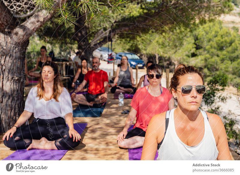 Verschiedene Menschen während der Yogastunde im Garten meditieren padmasana Lotus-Pose Sommer Park Gesundheit Wellness Lektion üben Übung Asana Harmonie