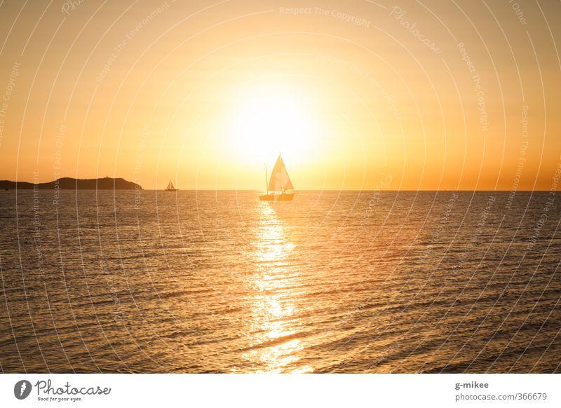 Goldener Sonnenuntergang Sommer Sommerurlaub Meer Segeln Natur Wasser Mittelmeer Schifffahrt Segelboot Segelschiff Bewegung Sport frei Unendlichkeit natürlich