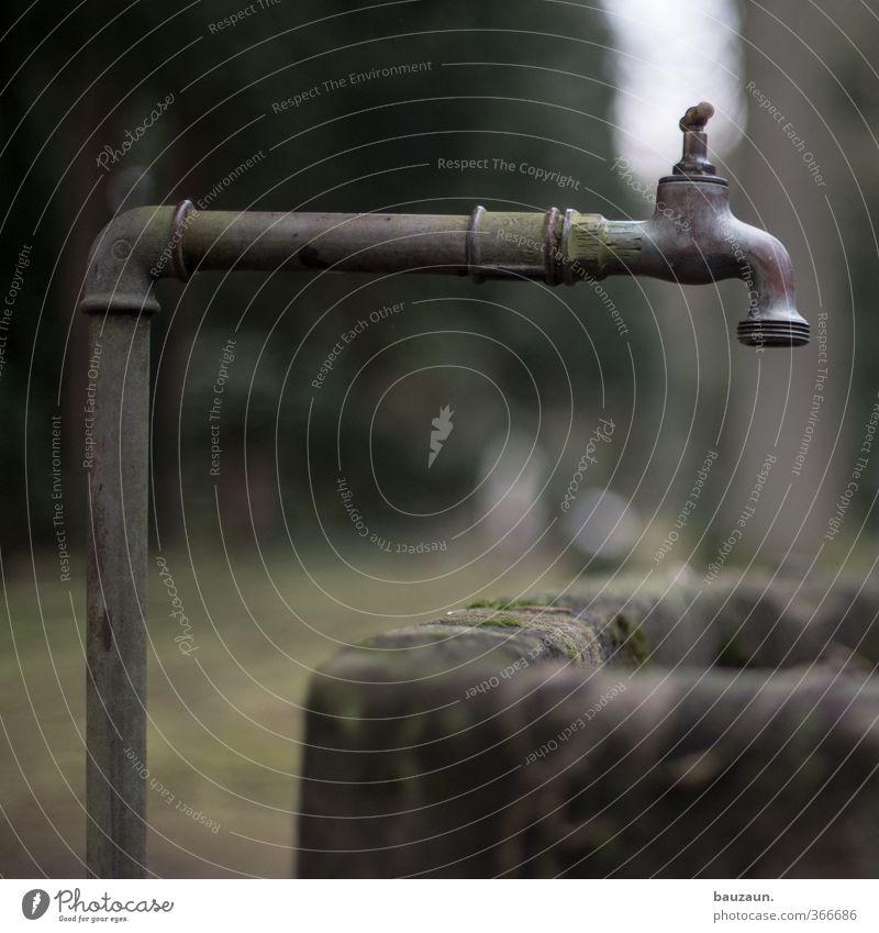 friedhof. grün Einsamkeit Tod Traurigkeit grau Stein Garten Metall trist Beton Vergänglichkeit Trauer Ende Flüssigkeit Moos Umweltschutz