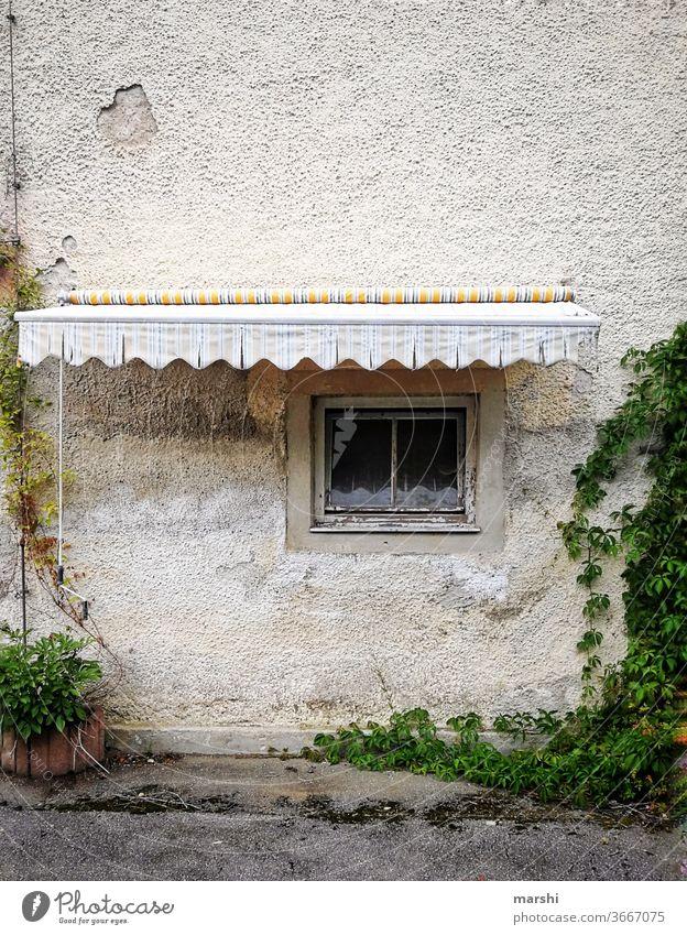 schattiges Plätzchen haus alt urig markise fenster hausfassage hotel efeu abgewohnt urban stadt landleben runtergekommen kaputt Fassade