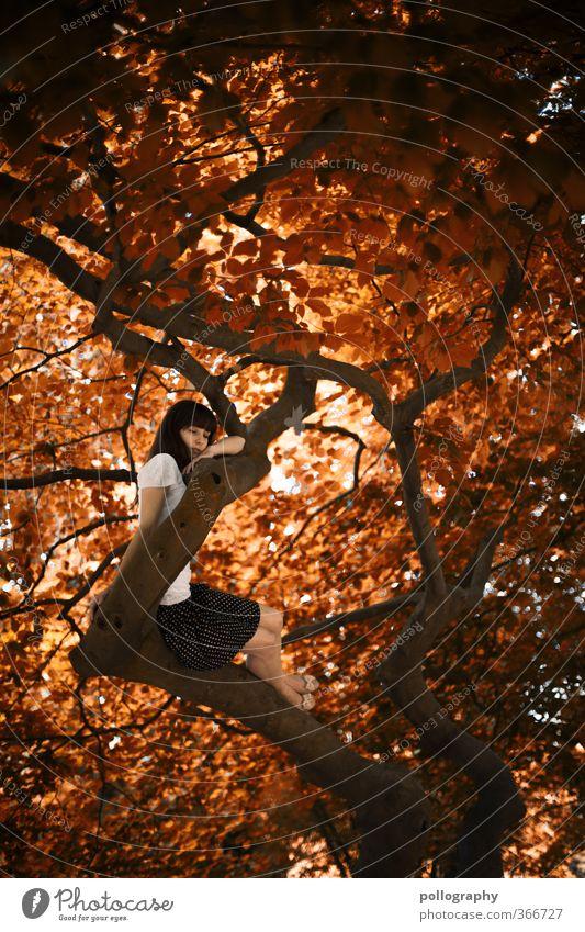 tree of life Mensch feminin Junge Frau Jugendliche Erwachsene Leben Körper 1 18-30 Jahre Umwelt Natur Pflanze Sommer Herbst Schönes Wetter Baum Grünpflanze Rock