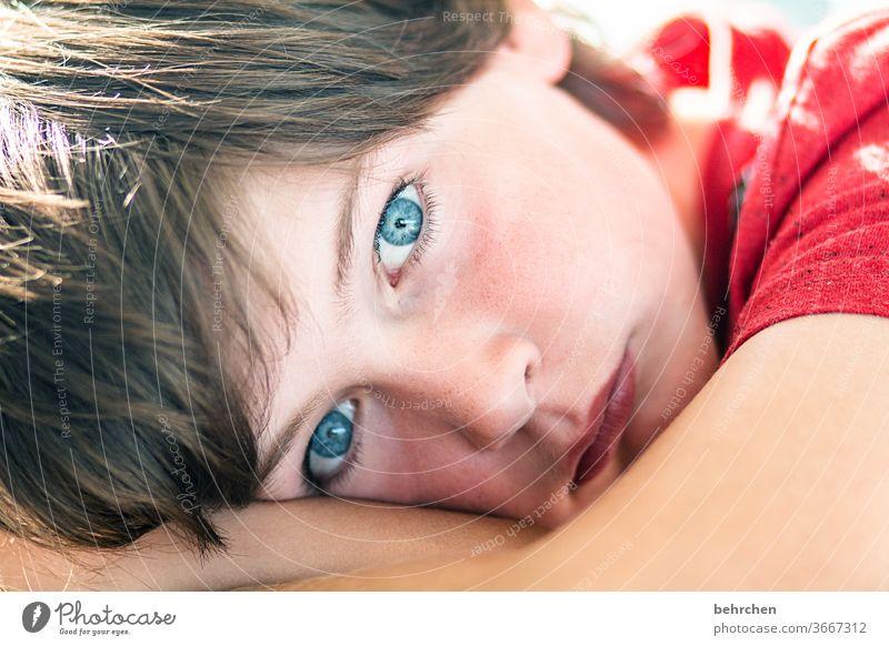 . träumen anschauen blaue augen Blick Kontrast Sohn Cool frech Licht Kind Sonnenlicht Porträt Nahaufnahme Coolness Tag Gesicht Kindheit Farbfoto Familie Junge