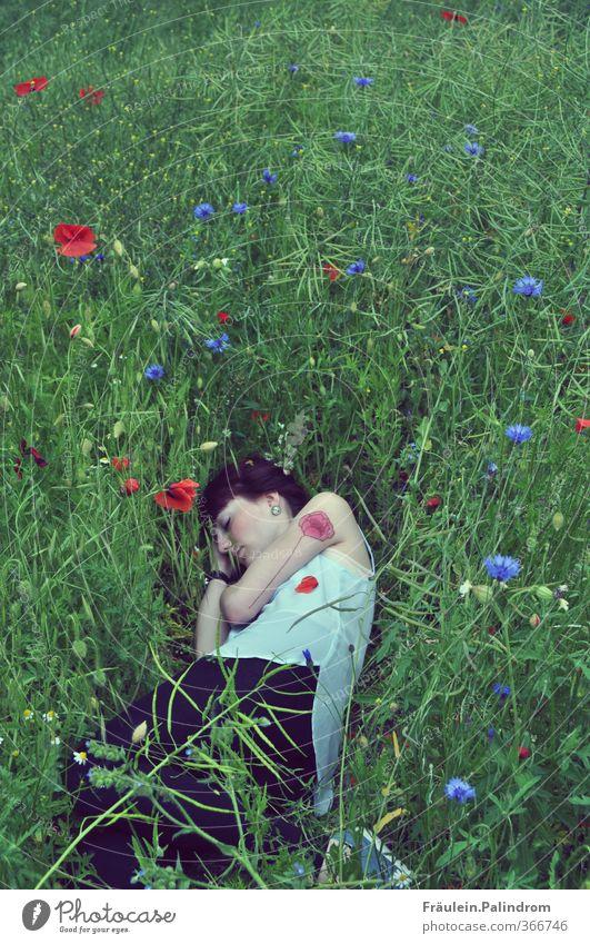 Ein Bett im Mohnfeld II. Mensch Frau Natur Jugendliche Sommer Pflanze Erholung Einsamkeit ruhig Junge Frau Erwachsene Umwelt Wiese 18-30 Jahre feminin Frühling