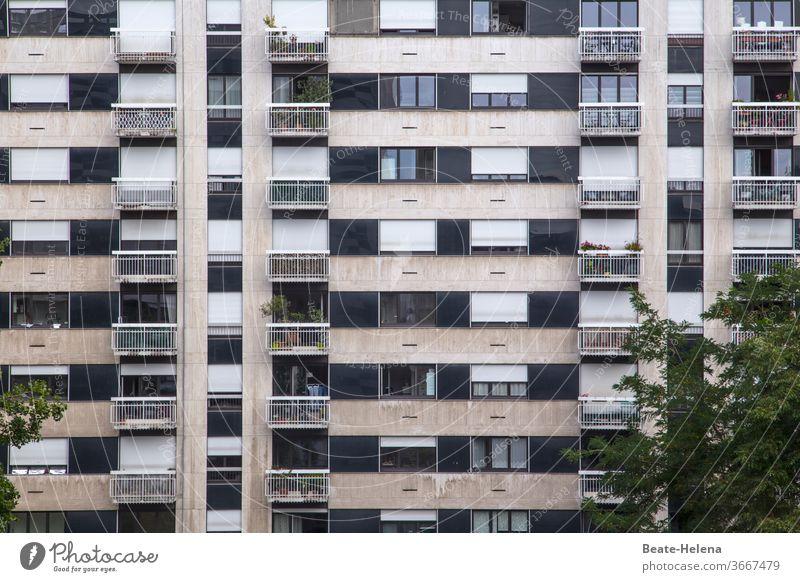 Paris - Wohnkomplex im 15. Arrondissement mit Bäumen und Balkonbepflanzung Wohnblock Individualisierung konform Grünpflanze Stadtbezirk Naturerlebnis grün