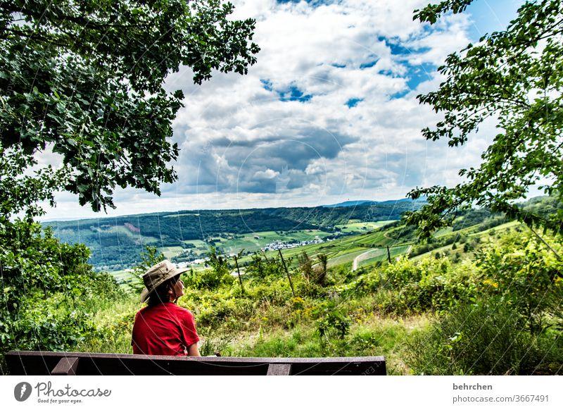 gute aussichten Weinberg Felder Kindheit Freiheit Ausflug Fernweh Farbfoto Bank weite Ferne Baum Deutschland Ferien & Urlaub & Reisen Himmel Wolken