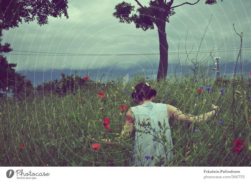 verwurzelt. Mensch feminin Junge Frau Jugendliche Rücken Arme 1 18-30 Jahre Erwachsene Natur Pflanze Himmel Frühling Sommer Wetter Gras Sträucher Feld entdecken