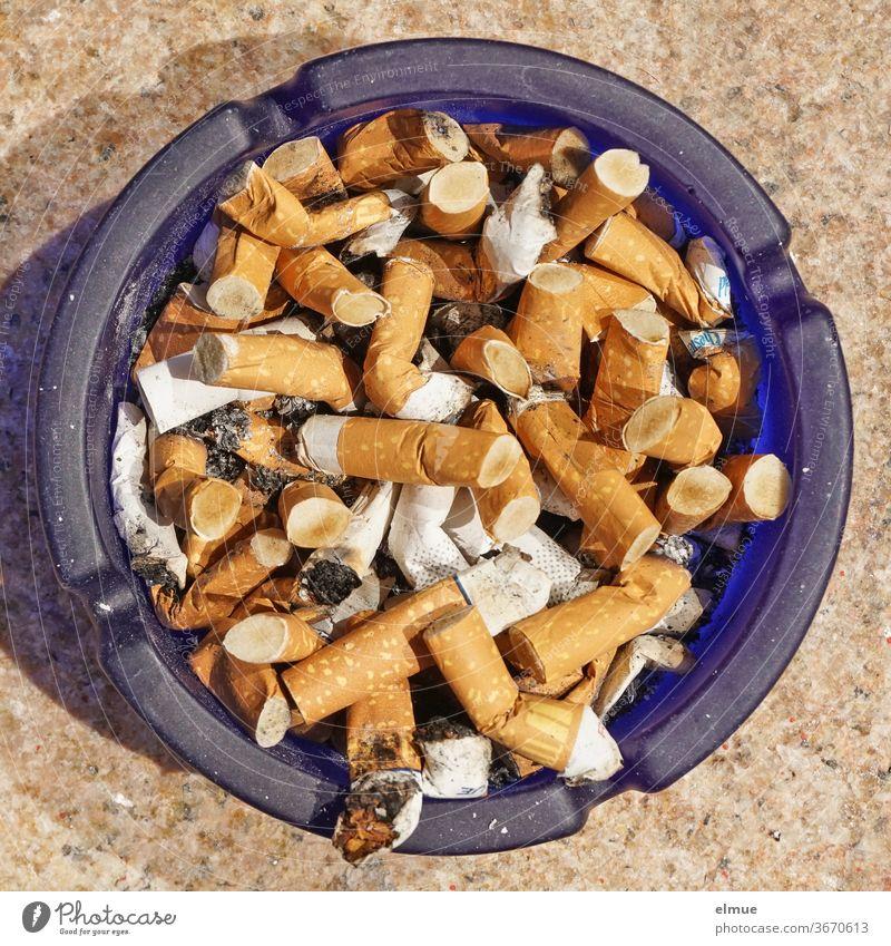 blauer Glasaschenbecher voller Zigarettenstummel in der Draufsicht Aschenbecher Stummel Fluppe Kettenraucher Sargnagel Nikotin rauchen Raucher Laster Sucht