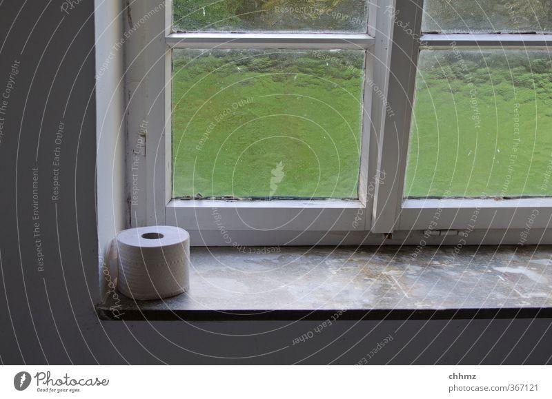 Notration Fenster Fensterbrett Sprossenfenster sitzen Toilettenpapier Klopapierhalter Glasscheibe Erleichterung Milchglas Öffentlich dringend Sauberkeit Licht
