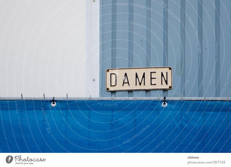 DAMEN Schilder & Markierungen Zaun Gitter Hinweisschild Stahl Kunststoff Schriftzeichen blau weiß Toilette Dame Barriere Sichtschutz Abdeckung dringend Farbfoto