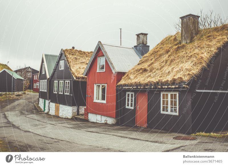 Island Inventar 38 Reetdach Reetdachhaus Strohdach Scb Schwedenhaus Häuserzeile diesig Hygge herbstlich Herbst