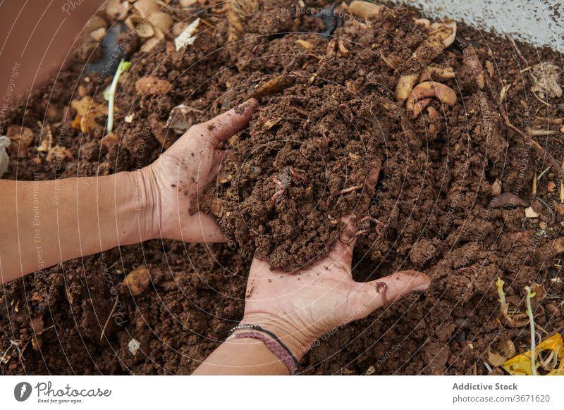 Gärtner nimmt Erde vom Komposthaufen Bauernhof Boden Landwirt Garten Haufen abbaubar Landschaft Kelle Natur Wurm ländlich organisch Botanik Schmutz Ackerland