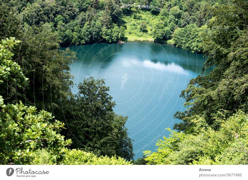 Maar statt mare See Teich Vulkansee Wald Naturschutzgebiet grün blau türkis klar Wasser glatt schönes Wetter windstill Ruhe Einsamkeit ruhig einsam Erholung