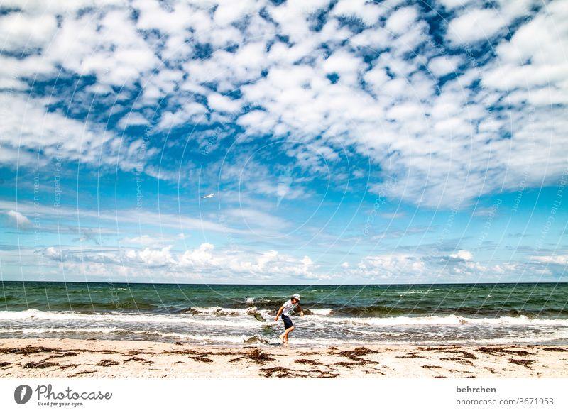 mehr meer geht immer Wasser Wellen Strand Meer Darß Ostsee Himmel Wolken Natur Landschaft Küste Farbfoto Außenaufnahme Ferien & Urlaub & Reisen Kind Kindheit