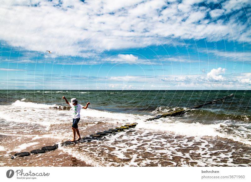 balanceakt weite Sehnsucht Fernweh träumen blau Himmel Ostsee Darß Meer Strand Wellen Wasser Natur Landschaft Küste Farbfoto Außenaufnahme