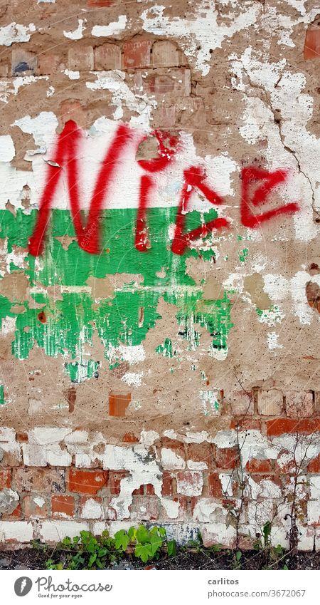it's nice to be a Preiß, but it's higher to be a Bayer Mauer Wand Graffiti schön Ziegeldach marode rot grün Schriftzeichen Fassade Buchstaben Vandalismus