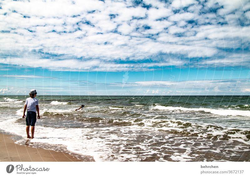 hier darf ich sein Spielen frei Freiheit genießen entspannen erholen Wolken Tourismus Fischland-Darß Deutschland Erholung Kind Kindheit Sommer