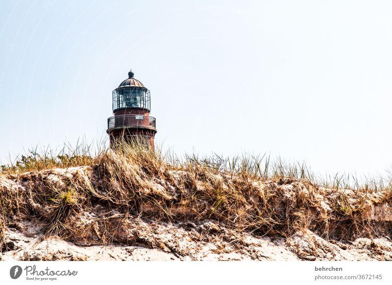 architektur und natur | leuchtturmliebe Strand Meer Düne Darß Ostsee Außenaufnahme Himmel Natur Landschaft Küste Farbfoto Ferien & Urlaub & Reisen Sommer
