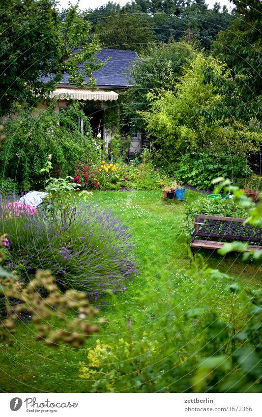 Gärtchen schrebergarten brombeere gartenhaus laube lavendel kleingartenkolonie baum blume blühen blüte erholung bank ferien gras himmel menschenleer natur