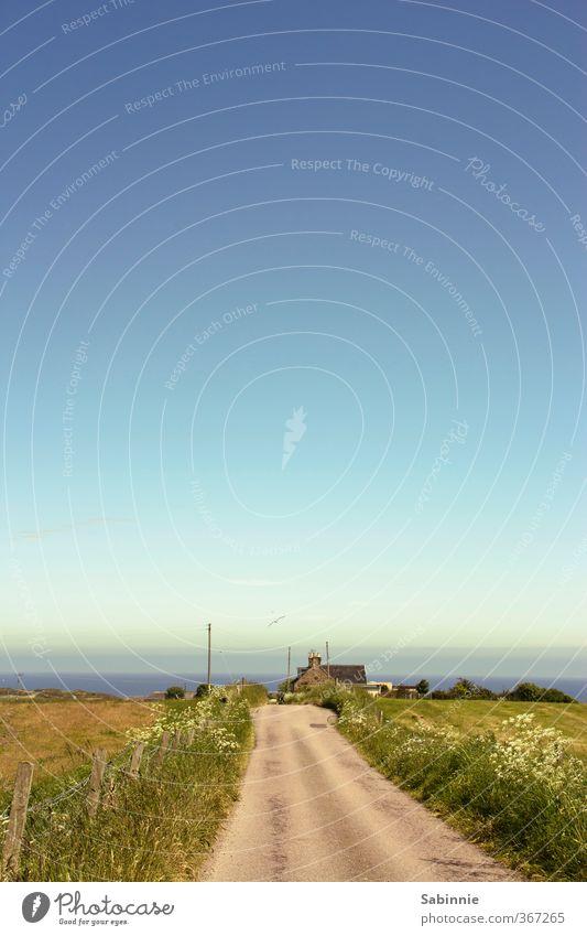 Mittagspause Himmel Natur blau Sommer Pflanze Sonne Meer Landschaft Haus Umwelt Ferne Wiese Gras Wege & Pfade Küste Feld
