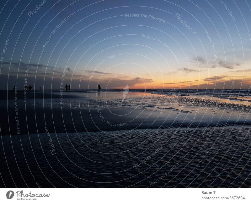Sonnenuntergang am Meer Strang Blaue Sunde Strand sonnenuntergang blau Natur Landschaft ozean Nordsee Ostsee Ferien Urlaub Reise reisen deutschland Wasser