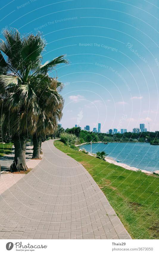 Flussuferansicht der Stadt Tel Aviv, Palmen und grünes Gras, blauer Himmel, sonniger Tag, Israel Mittelmeer mediterran Blauer Himmel malerisch heiß Sonne