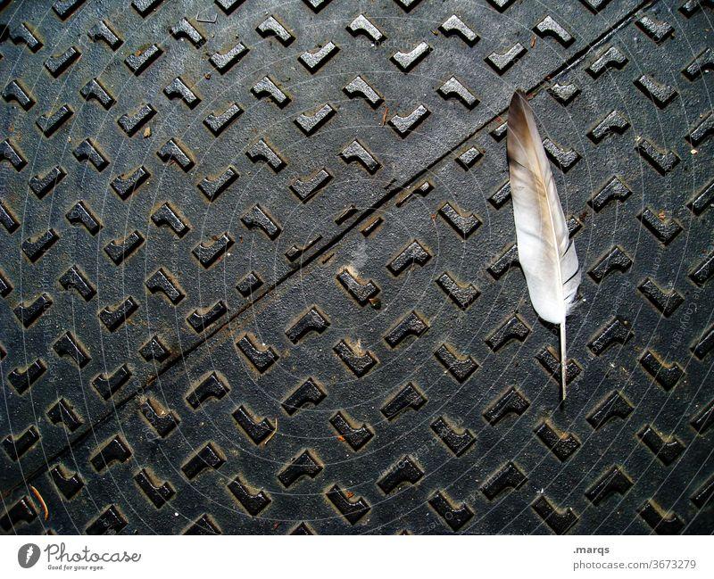 Heavy Metal-Feder weiß Metall schwarz Muster Strukturen & Formen Leichtigkeit schwer massiv Gegensatz ästhetisch Vogelperspektive
