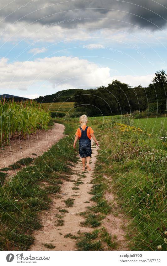Ich geh dann schon mal Mensch Kind Himmel Natur blau grün Sommer Pflanze Landschaft Tier Wolken Berge u. Gebirge Wiese Bewegung Junge Sand