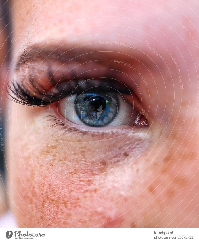 Lovely Eyes | Lieblingsmensch Auge Augenbraue Wimpern Iris Sommersprossen Pupille Augapfel Schminke Wimperntusche Jugendliche Teenager Weiblich Haut Gesicht