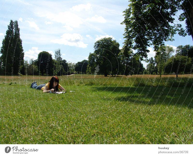 Mädchen im Hyde Park Frau Himmel grün Idylle Sydney Australien Hydepark