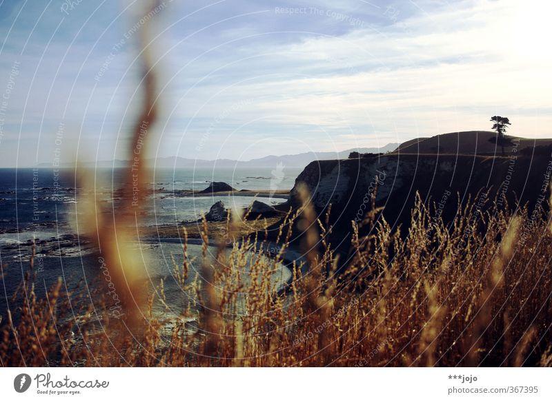 pacific. Himmel Natur Ferien & Urlaub & Reisen Meer Landschaft Strand Ferne Berge u. Gebirge Reisefotografie Küste Gras Felsen Horizont Wellen Aussicht Schönes Wetter