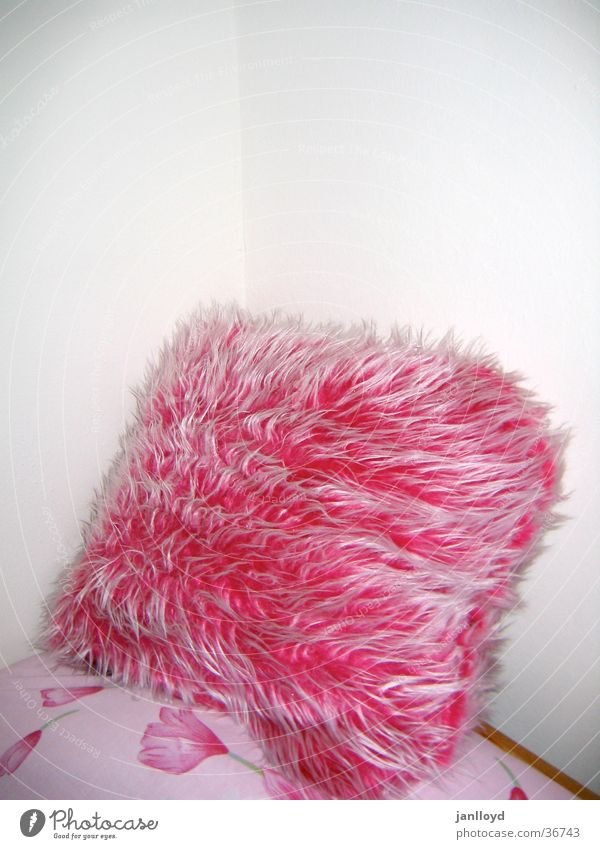 flauschig Wand rosa Ecke Bett weich Häusliches Leben Fell Kissen gestellt Kopfkissen