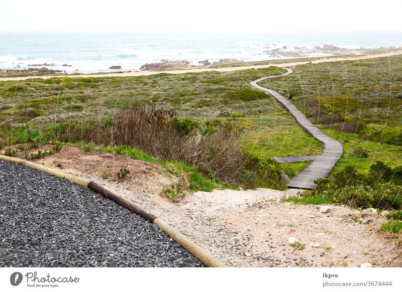 in Südafrika Strandweg in der Nähe des Indischen Ozeans Laufsteg Meer Himmel Weg MEER Natur hölzern Sand Promenade Wasser Küste Urlaub reisen Holz tropisch