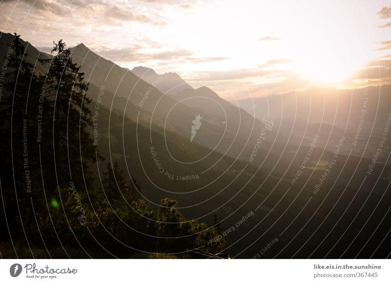 Sonntagmorgen Sinnesorgane Erholung ruhig Ferne Freiheit Berge u. Gebirge wandern Umwelt Natur Landschaft Sommer Schönes Wetter Baum Hügel Felsen Alpen Gipfel