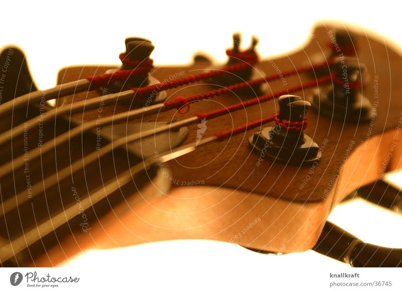 Bass #1 Elektrobass Saite Saiteninstrumente Freizeit & Hobby Musik Musikinstrument