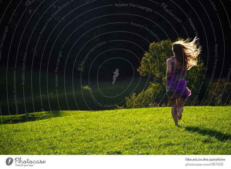 schatz! geh nicht! schön Zufriedenheit Erholung Sommer Sommerurlaub feminin Junge Frau Haare & Frisuren Natur Schönes Wetter Baum Wiese Wald Kleid blond