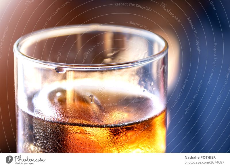 Alkoholisches Getränk alkoholisches Getränk Glas Bar Cocktail trinken frisch Frische abschließen liquide erfrischend