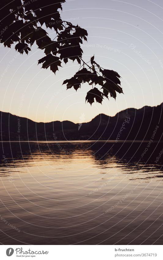 Abend am See, Silhouette von Bergen und Ast eines Baumes Sonnenuntergang Himmel Wasser Natur Reflexion & Spiegelung Dämmerung Landschaft Wolfgangsee Österreich
