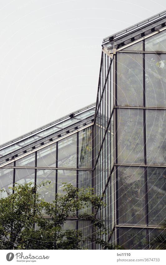Tropenhaus Teilansicht außen Gewächshaus Tropenpflanzen Glashaus Temperatur Regenwald Pflanzen exotische Pflanzen Glasscheiben Luftfeuchtigkeit