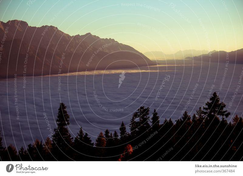 guten morgen ihr da unten! Natur Ferien & Urlaub & Reisen Erholung Einsamkeit Landschaft ruhig Wolken Wald Ferne Umwelt Berge u. Gebirge Freiheit Felsen
