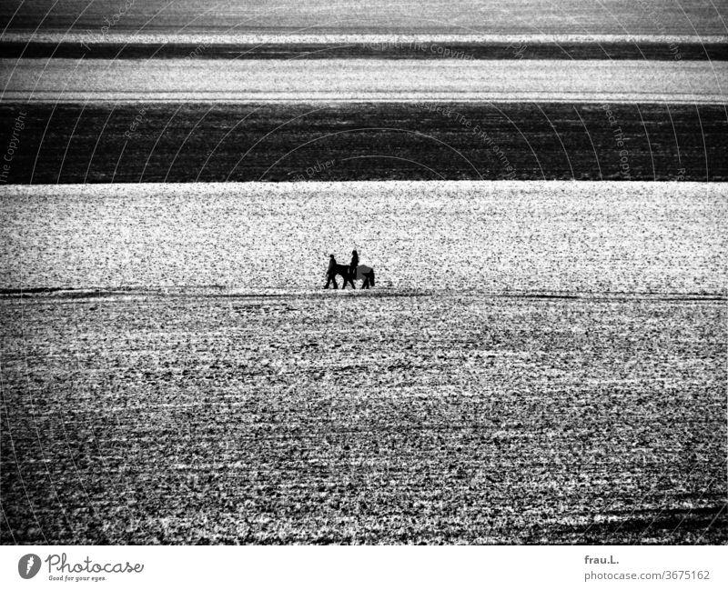 Wer reitet so spät durch eisige Felder und Wind, es ist ein Vater mit seinem Kind. Pony Dorf Acker Mädchen Mann Winter Abend